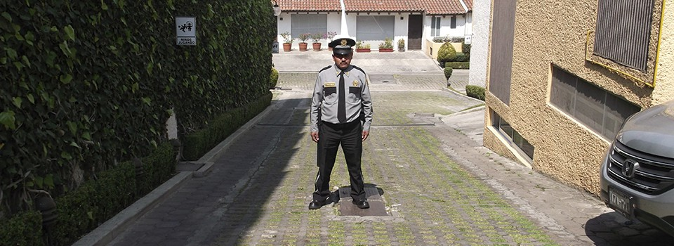Seguridad Intramuros
